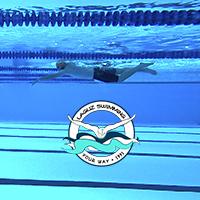 Rutina de natacion - nadar online