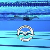 Rutina natacion - nadar online