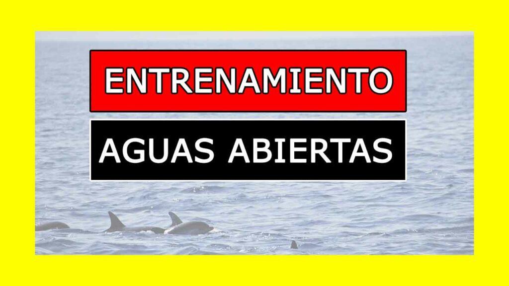 Entrenamiento de Natación Aguas Abiertas pdf